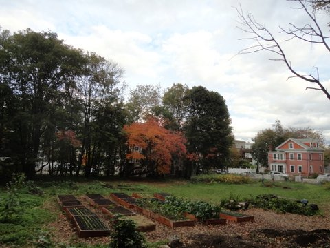 Thornton Farm & Gardens